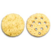 Texture Repair Sponges
